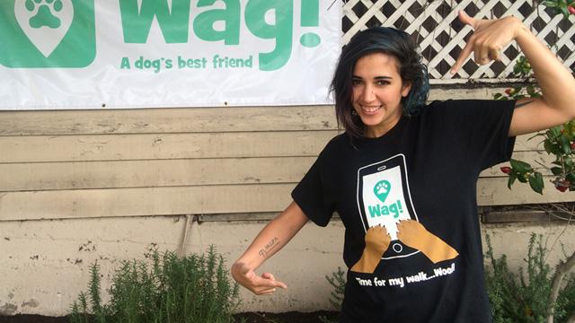 Los Angeles, West Hollywood Dog Walker and Dog Sitter 5