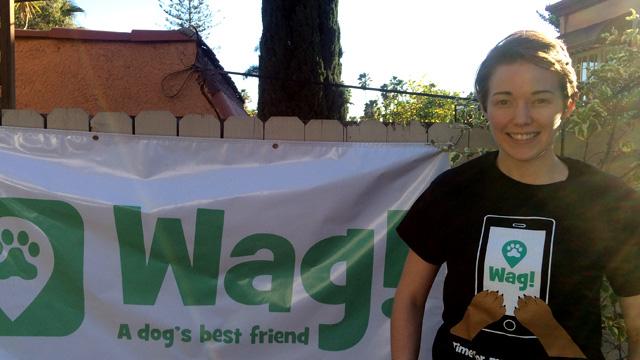 Los Angeles, Sherman Oaks Dog Walker and Dog Sitter 7