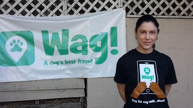 Los Angeles, Glendale Dog Walker and Dog Sitter 3