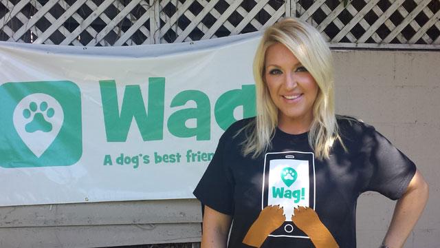 Los Angeles, Hollywood Hills Dog Walker and Dog Sitter 2