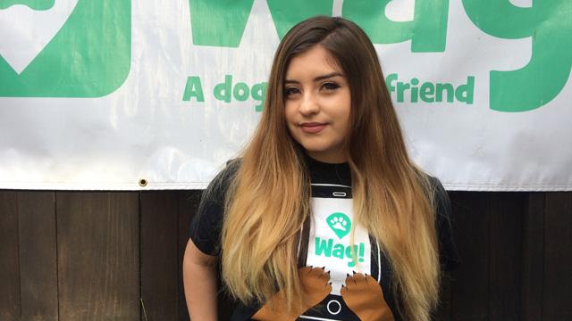 San Francisco, Mission District Dog Walker and Dog Sitter 7