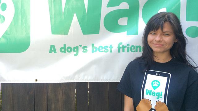 San Francisco, Japantown Dog Walker and Dog Sitter 1