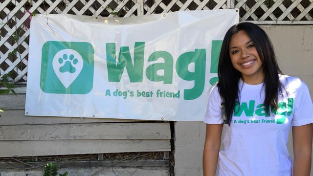 Los Angeles, South Park Dog Walker and Dog Sitter 2
