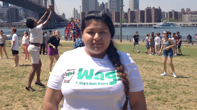 Queens, South Ozone Park Dog Walker and Dog Sitter 9