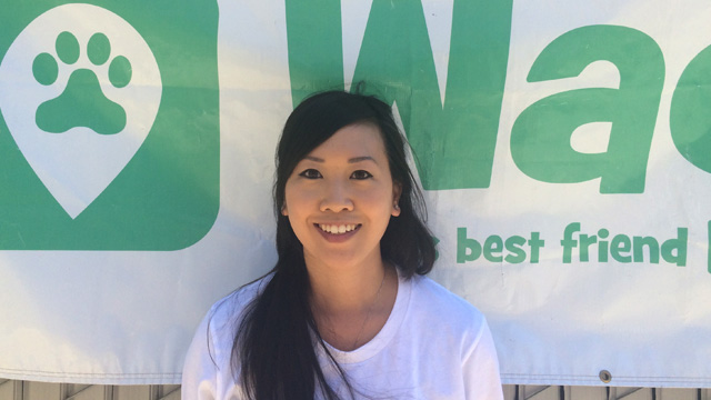San Francisco, Pacific Heights Dog Walker and Dog Sitter 6