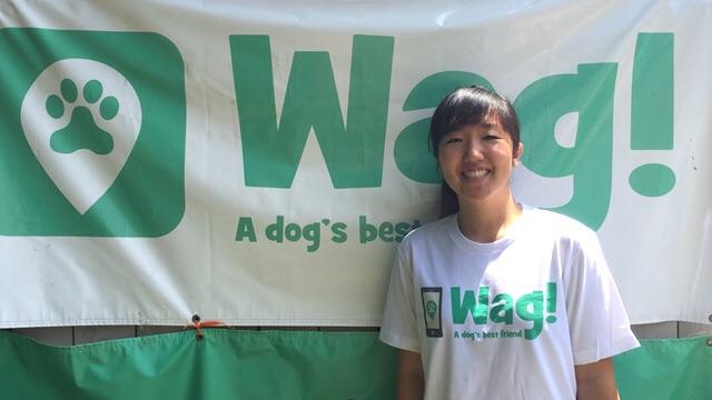 Los Angeles, Studio City Dog Walker and Dog Sitter 1
