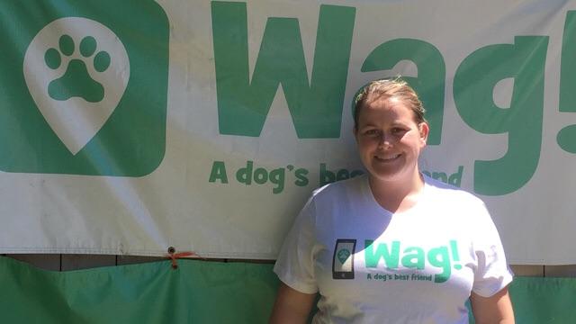 Long Beach, Bixby Knolls Dog Walker and Dog Sitter 10