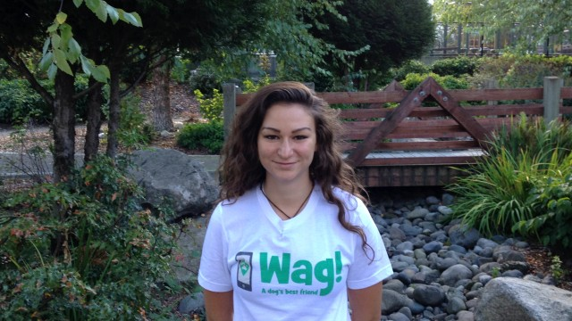 Seattle, Pioneer Square Dog Walker and Dog Sitter 5