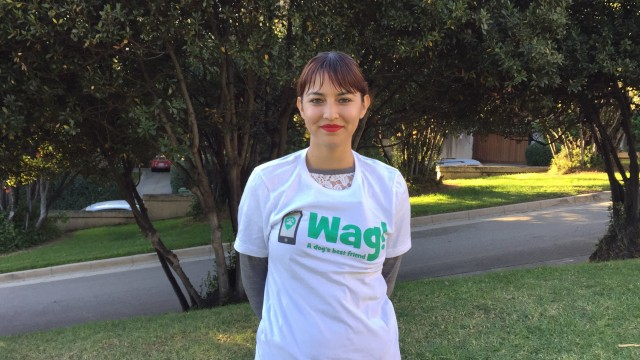 Los Angeles, Chinatown Dog Walker and Dog Sitter 6