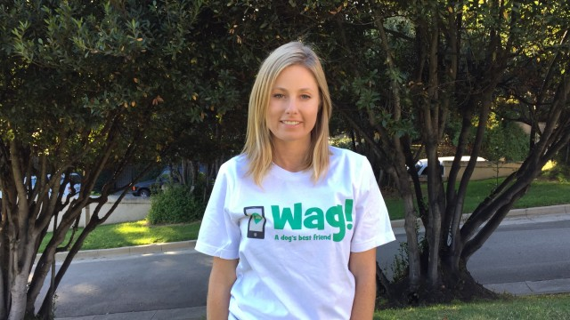 Los Angeles, Sun Valley Dog Walker and Dog Sitter 7