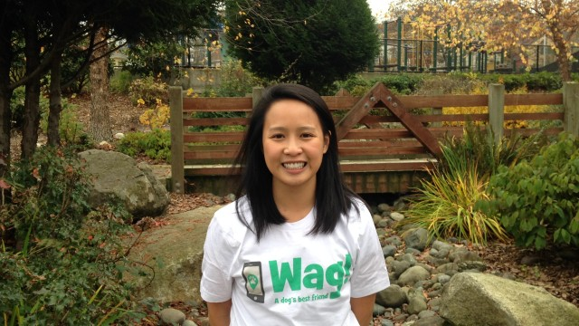 Seattle, Downtown Dog Walker and Dog Sitter 5
