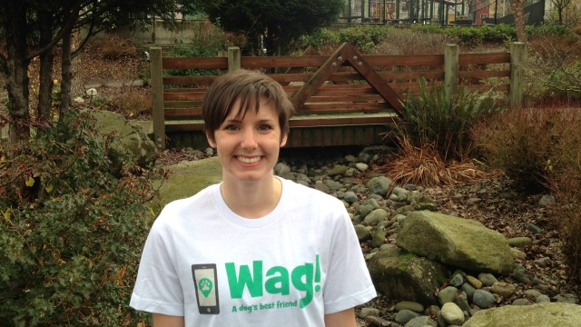 Seattle, Capitol Hill Dog Walker and Dog Sitter 2