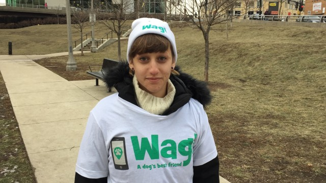 Chicago, Jefferson Park Dog Walker and Dog Sitter 8