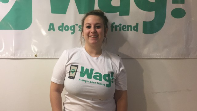 Bronx, Wakefield Dog Walker and Dog Sitter 6