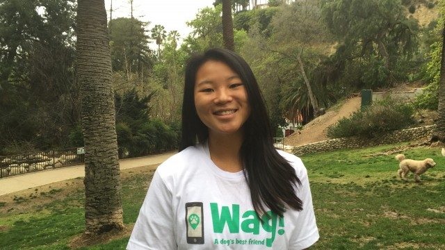Los Angeles, Rancho Park Dog Walker and Dog Sitter 1