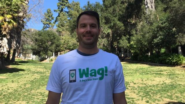 Los Angeles, West Hills Dog Walker and Dog Sitter 2