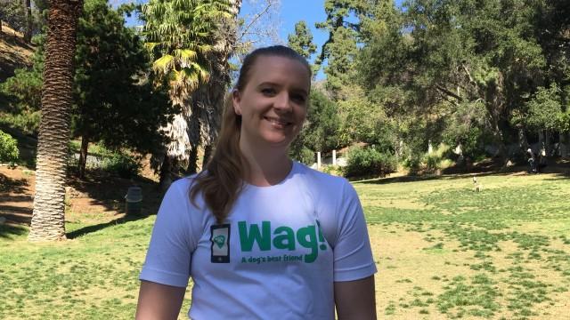 Los Angeles, Canoga Park Dog Walker and Dog Sitter 4