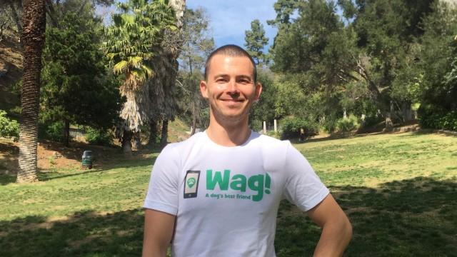 Los Angeles, Reseda Dog Walker and Dog Sitter 8