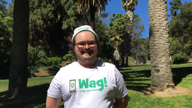 Los Angeles, Beverlywood Dog Walker and Dog Sitter 9
