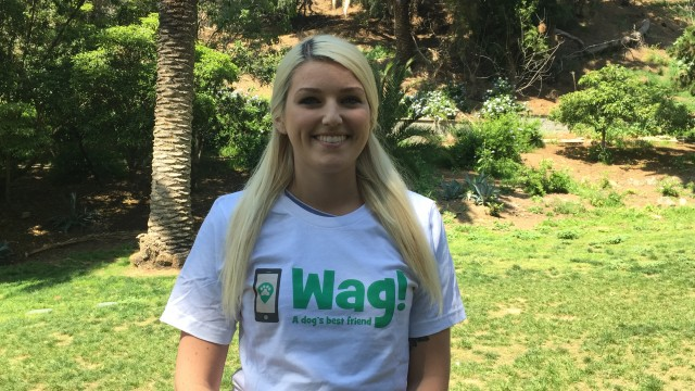 Los Angeles, Sun Valley Dog Walker and Dog Sitter 2