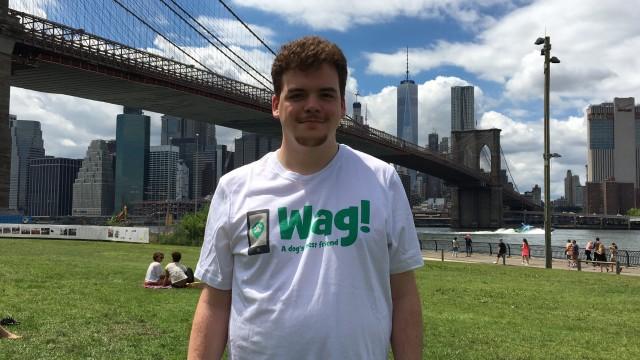New York, Lower Manhattan Dog Walker and Dog Sitter 12