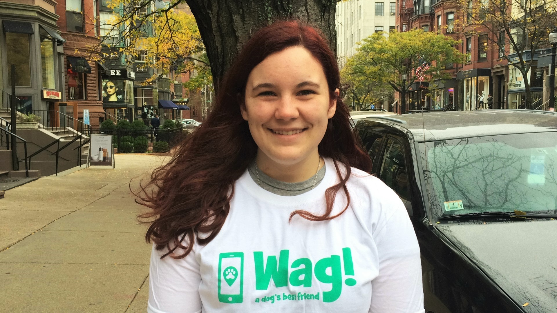 Boston, Back Bay Dog Walker and Dog Sitter 9