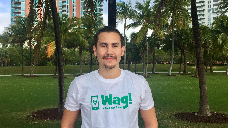 Miami, Wynwood Dog Walker and Dog Sitter 7